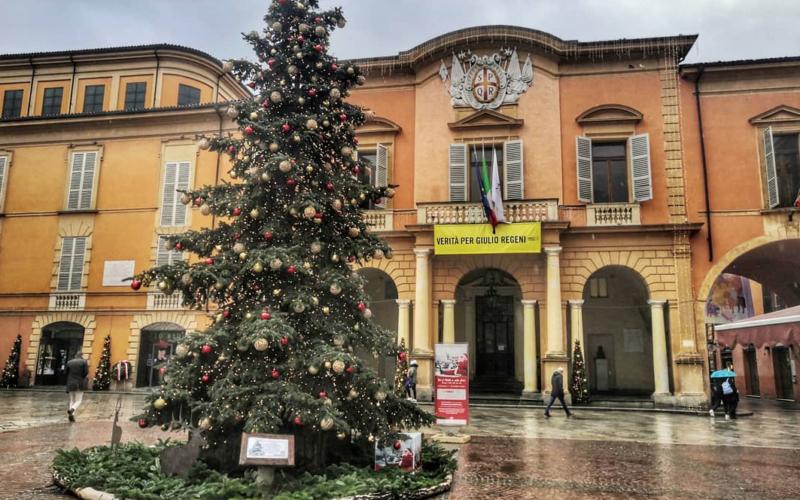 CAMILLO, L'ALBERO CHE PIACE AI REGGIANI
