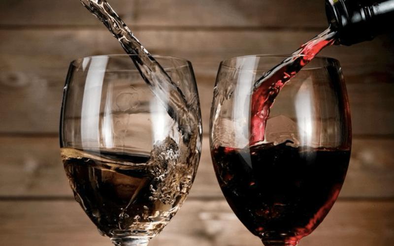 Bere VINO fa bene al CERVELLO