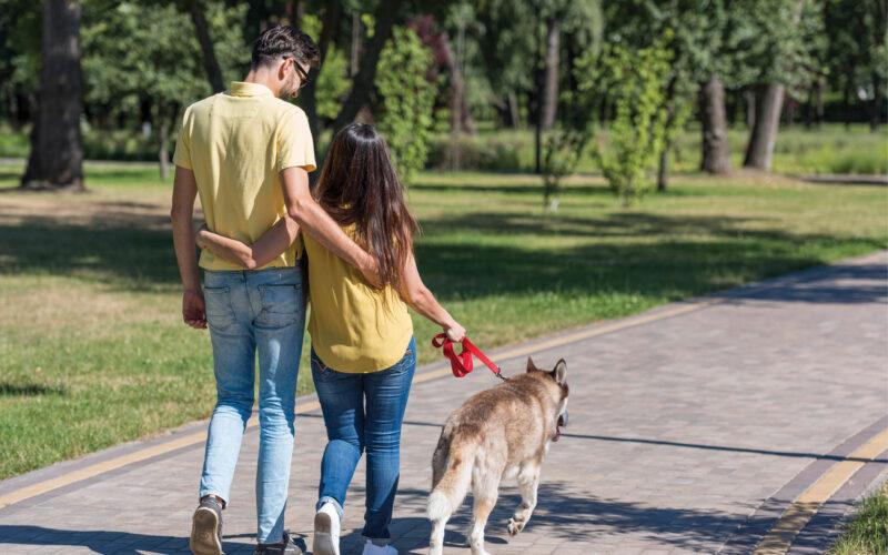 Passeggiare con il cane; meglio che andare in palestra