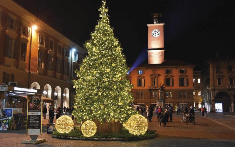 """Il """"triste"""" Natale dell'albero Camillo"""